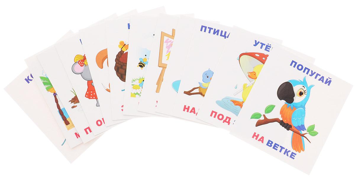 Айрис-пресс Обучающие карточки Кто где находится