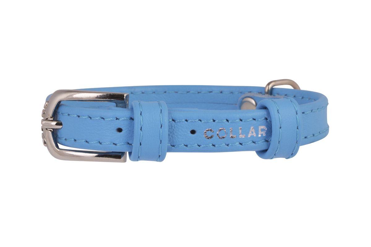 Ошейник CoLLaR Glamour, цвет: синий, ширина 12 мм, длина 21-29 см. 3256232562Ошейник CoLLaR GLAMOUR без украшений (ширина 12мм, длина 21-29см) синий