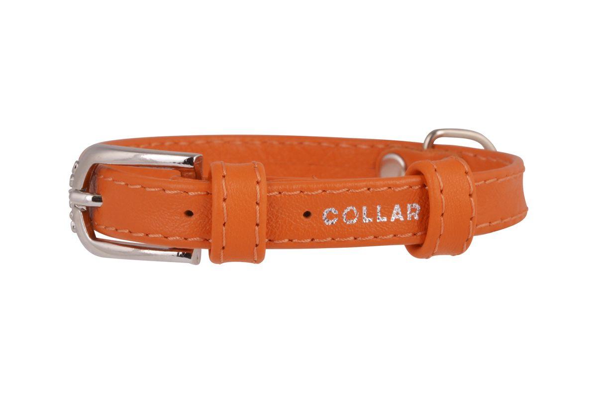 Ошейник CoLLaR Glamour, цвет: оранжевый, ширина 12 мм, длина 21-29 см. 3256432564Ошейник CoLLaR GLAMOUR без украшений (ширина 12мм, длина 21-29см) оранжевый