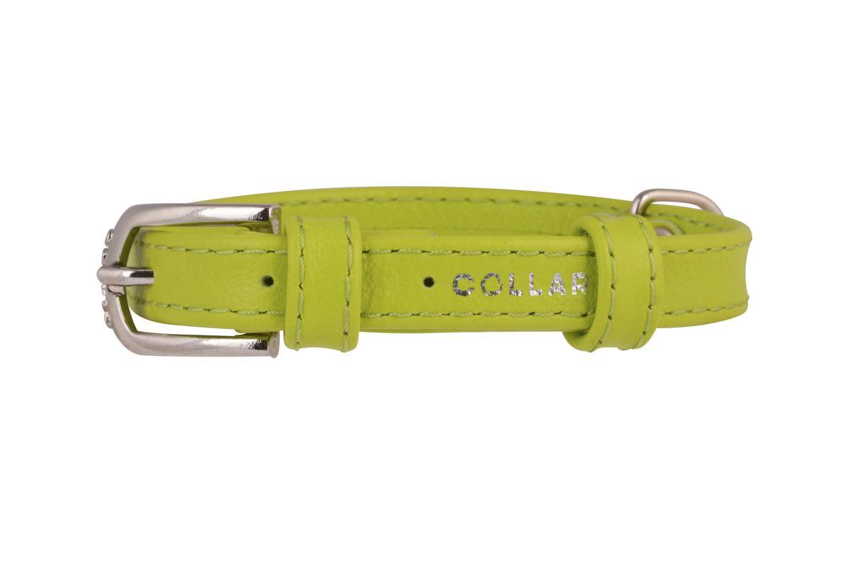 Ошейник CoLLaR Glamour, цвет: зеленый, ширина 12 мм, длина 21-29 см. 3232Ошейник CoLLaR GLAMOUR без украшений (ширина 12мм, длина 21-29см) зелёный