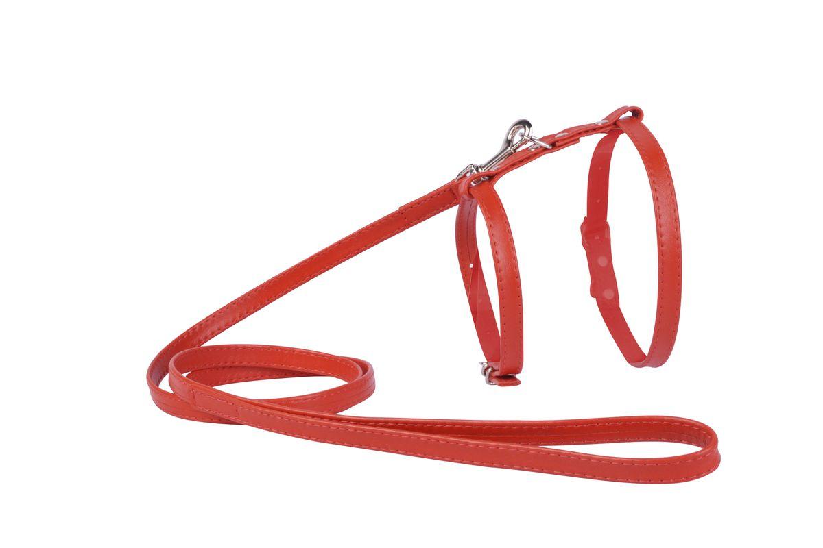 Шлейка CoLLaR Glamour, с поводком, цвет: красный, ширина 12 мм, обхват груди: 35-43 см34003Шлея CoLLaR GLAMOUR с поводком (ширина 12мм, А:25-35см, В:35-43 см) красная