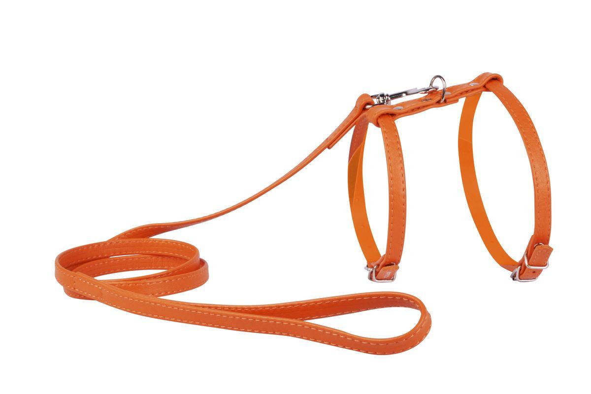 Шлейка CoLLaR Glamour, с поводком, цвет: оранжевый, ширина 12 мм, обхват груди: 35-43 см34004Шлея CoLLaR GLAMOUR с поводком (ширина 12мм, А:25-35см, В:35-43 см) оранжевая