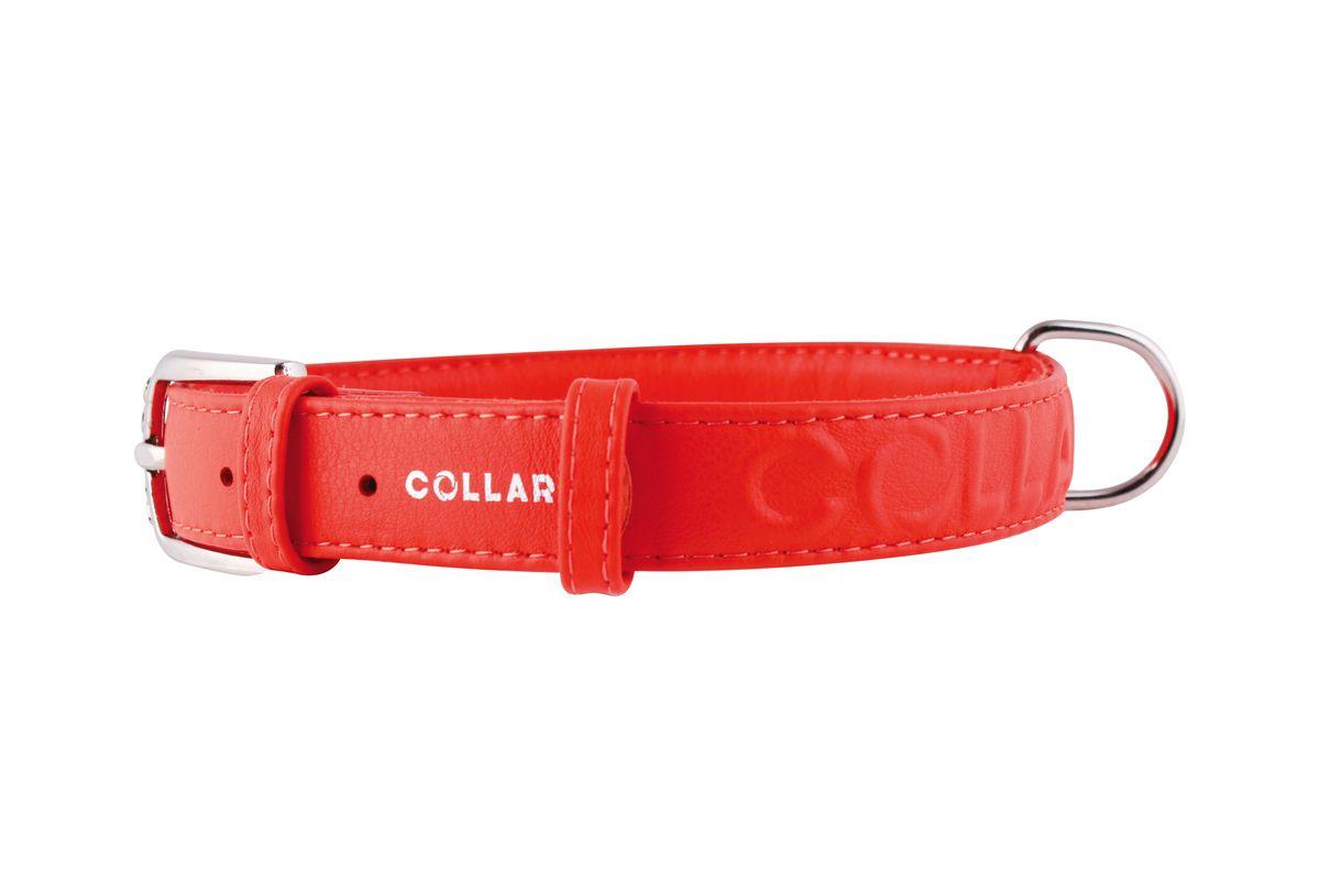 Ошейник CoLLaR Glamour, цвет: красный, ширина 25 мм, длина 38-49 см. 3457334573Ошейник CoLLaR GLAMOUR с объемной надписью (ширина 25мм, длина 38-49см)красный