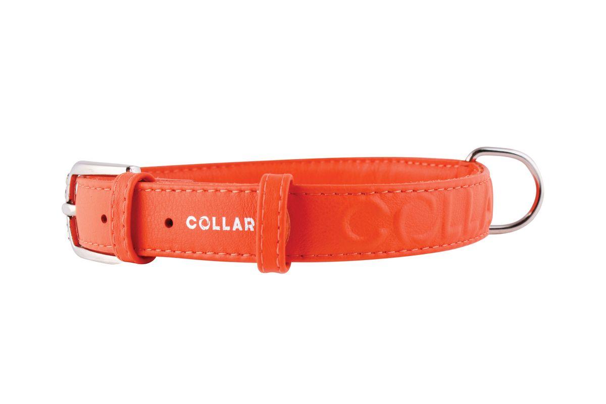 Ошейник CoLLaR Glamour, цвет: оранжевый, ширина 25 мм, длина 38-49 см. 3457434574Ошейник CoLLaR GLAMOUR с объемной надписью (ширина 25мм, длина 38-49см)оранжевый