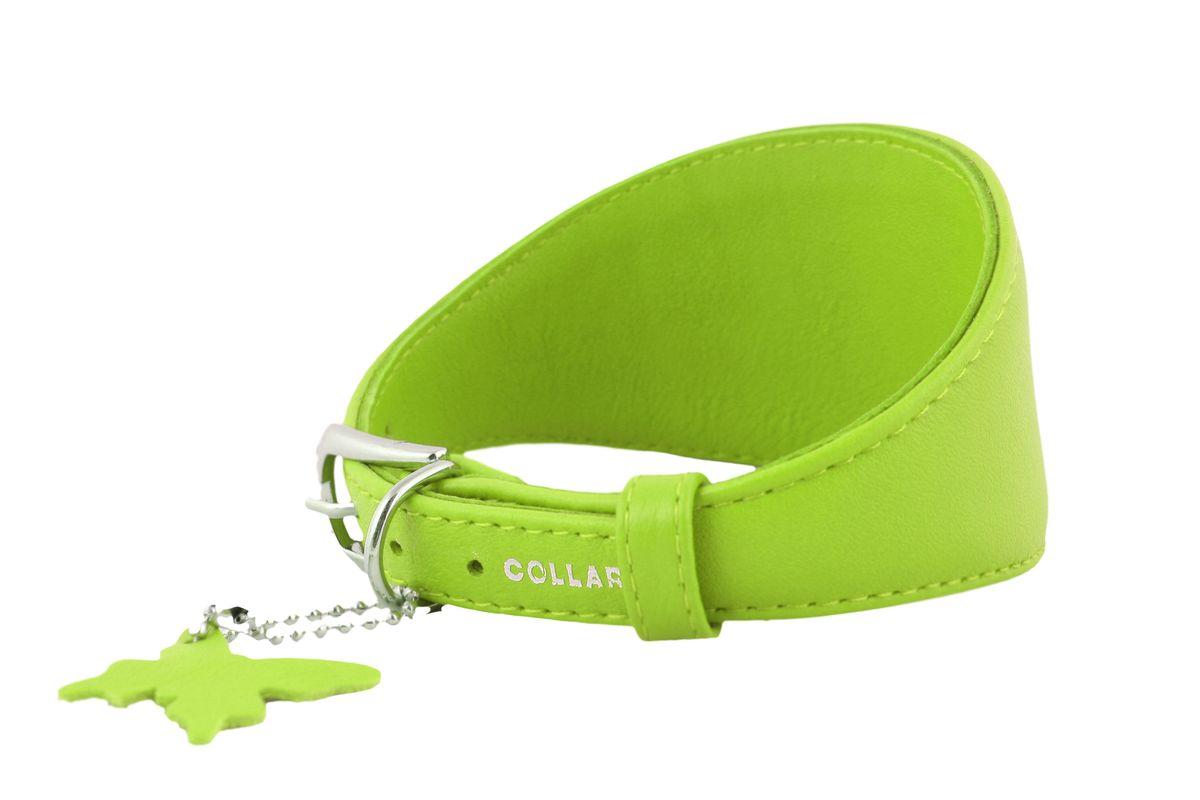 Ошейник CoLLaR Glamour, для борзых собак, цвет: зеленый, ширина 15 мм, длина 29-35 см34665Ошейник CoLLaR GLAMOUR для борзых собак без украшений (ширина 15мм, длина 29-35см) зеленый