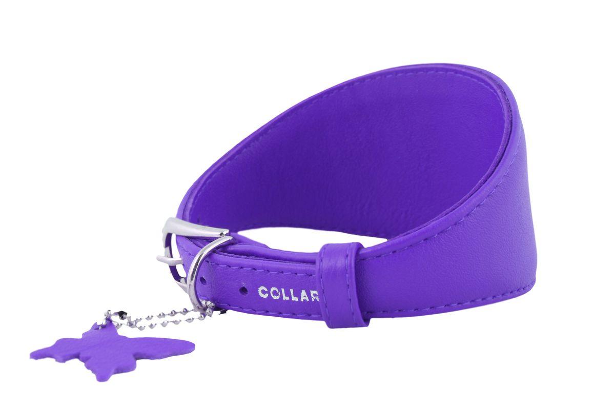 Ошейник CoLLaR Glamour, для борзых собак, цвет: фиолетовый, ширина 15 мм, длина 29-35 см34669Ошейник CoLLaR GLAMOUR для борзых собак без украшений (ширина 15мм, длина 29-35см) фиолетовый
