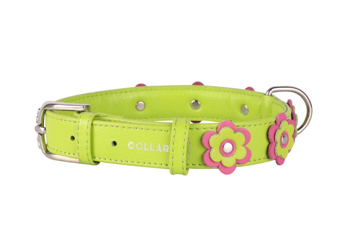Ошейник CoLLaR Glamour Аппликация, цвет: зеленый, ширина 25 мм, длина 38-49 см35035Ошейник CoLLaR GLAMOUR с украшением аппликация (ширина 25мм, длина 38-49см) зелёный