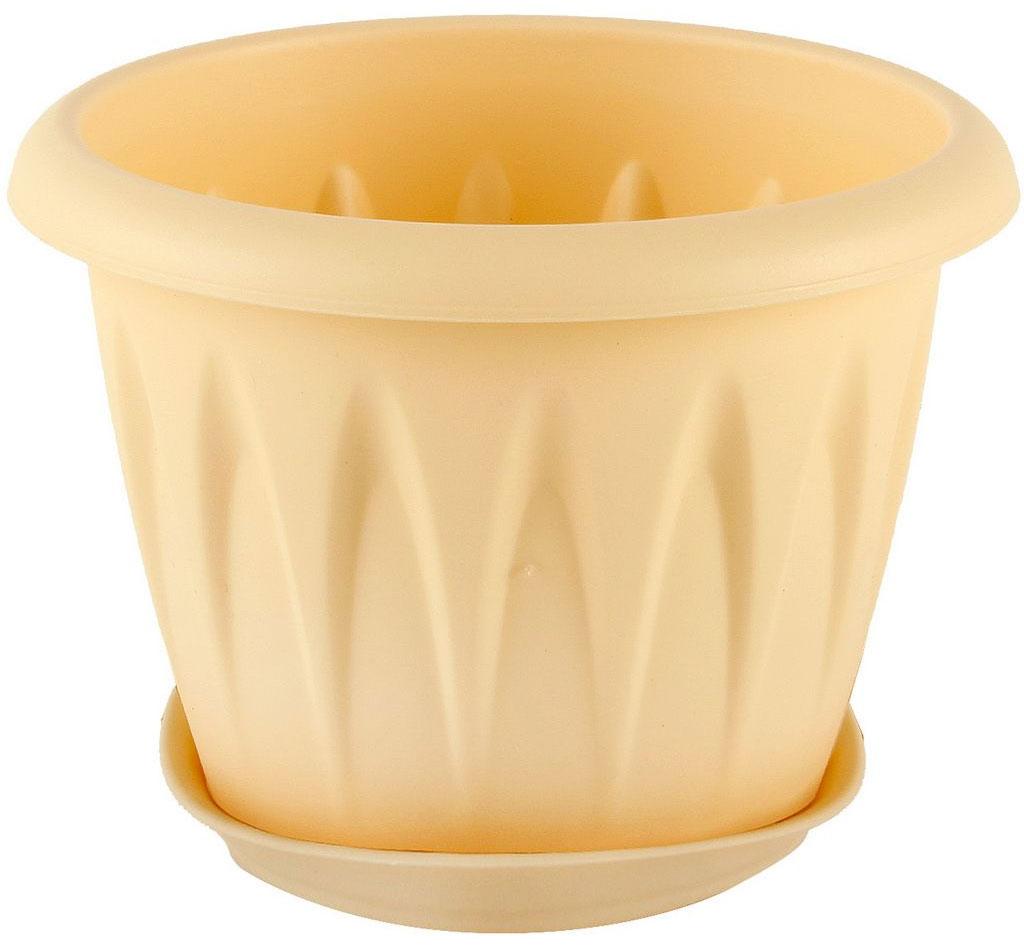 Кашпо Idea Алиция, с поддоном, цвет: белая глина, 600 млМ 3063Кашпо Idea Алиция изготовлено из прочного полипропилена (пластика) и предназначено для выращивания растений, цветов и трав в домашних условиях. Круглый поддон обеспечивает сток воды. Такое кашпо порадует вас функциональностью, а благодаря лаконичному дизайну впишется в любой интерьер помещения. Диаметр кашпо по верхнему краю: 12 см. Высота кашпо: 9,5 см. Диаметр поддона: 9,5 см. Объем кашпо: 0,6 л.