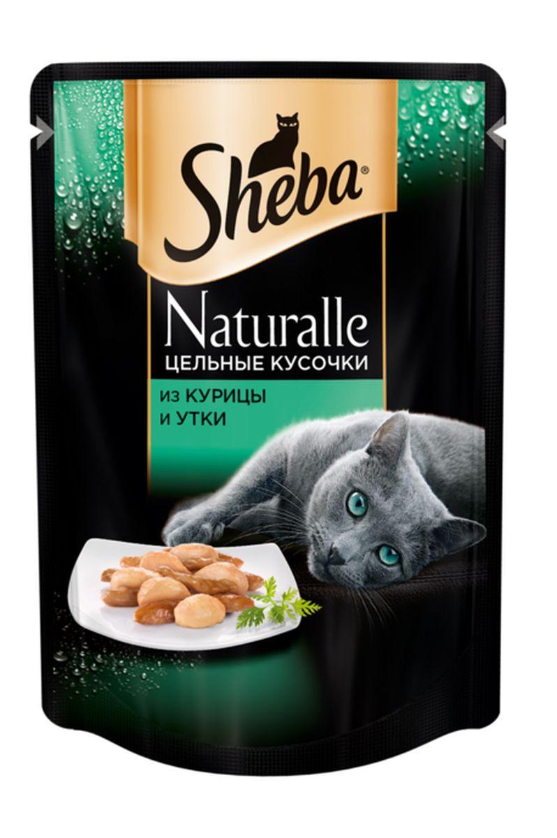 Консервы для кошек Sheba Naturalle, курица с уткой, 80 г41846Уважаемые клиенты! Обращаем ваше внимание на возможные изменения в дизайне упаковки. Качественные характеристики товара остаются неизменными. Поставка осуществляется в зависимости от наличия на складе.
