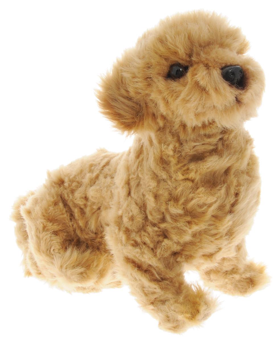 Hansa Toys Мягкая игрушка Филиппинская собака 30 см6688Мягкая озвученная игрушка Hansa Toys Филиппинская собака вызовет улыбку у каждого, кто ее увидит. Она выполнена из приятного на ощупь текстильного материала с ворсом. У собачки милая мордочка с черным носиком и пластиковыми глазками. Игрушка достаточно детализирована и выглядит совсем как свой живой прототип. Игрушка подарит своему обладателю хорошее настроение и позволит познакомиться с животным в игровой форме. С мягкой игрушкой Hansa Toys ребенок действительно познает мир, играя!