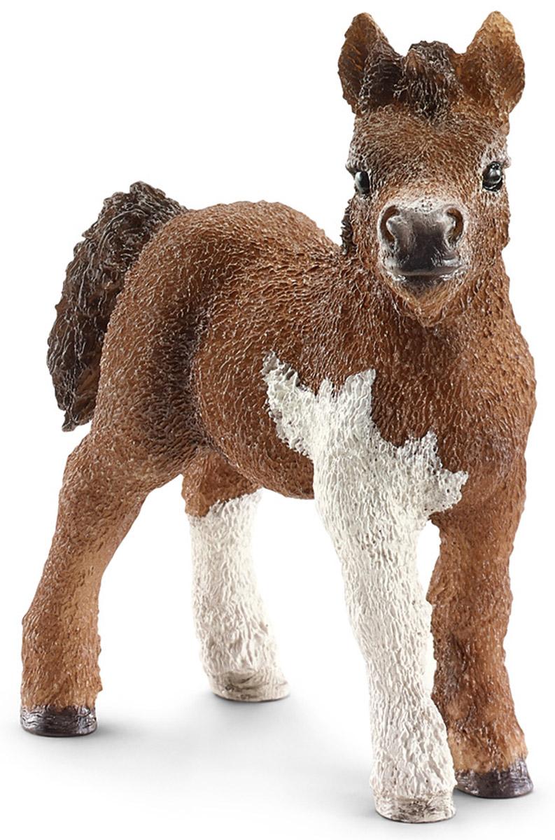Schleich Фигурка Шетландский пони жеребенок13752Фигурка очаровательного жеребенка Schleich породы Шетланд пони разнообразит игру вашего ребенка и станет достойным пополнением его коллекции лошадей. Пони породы Шетланд назван в честь острова неподалеку от Шотландии. Они очень выносливы и использовались в сельском хозяйстве и горнодобывающей промышленности в холодном суровом климате. Сейчас эту породу лошадей можно увидеть в зоопарках, цирках, они используются для занятий с детьми и взрослыми, поскольку отличаются спокойными и плавными движениями. Прекрасно выполненные фигурки Schleich отличаются высочайшим качеством игрушек ручной работы. Все они создаются при постоянном сотрудничестве с Берлинским зоопарком, а потому являются максимально точной копией настоящих животных. Каждая фигурка разработана с учетом исследований в области педагогики и производится как настоящее произведение для маленьких детских ручек.