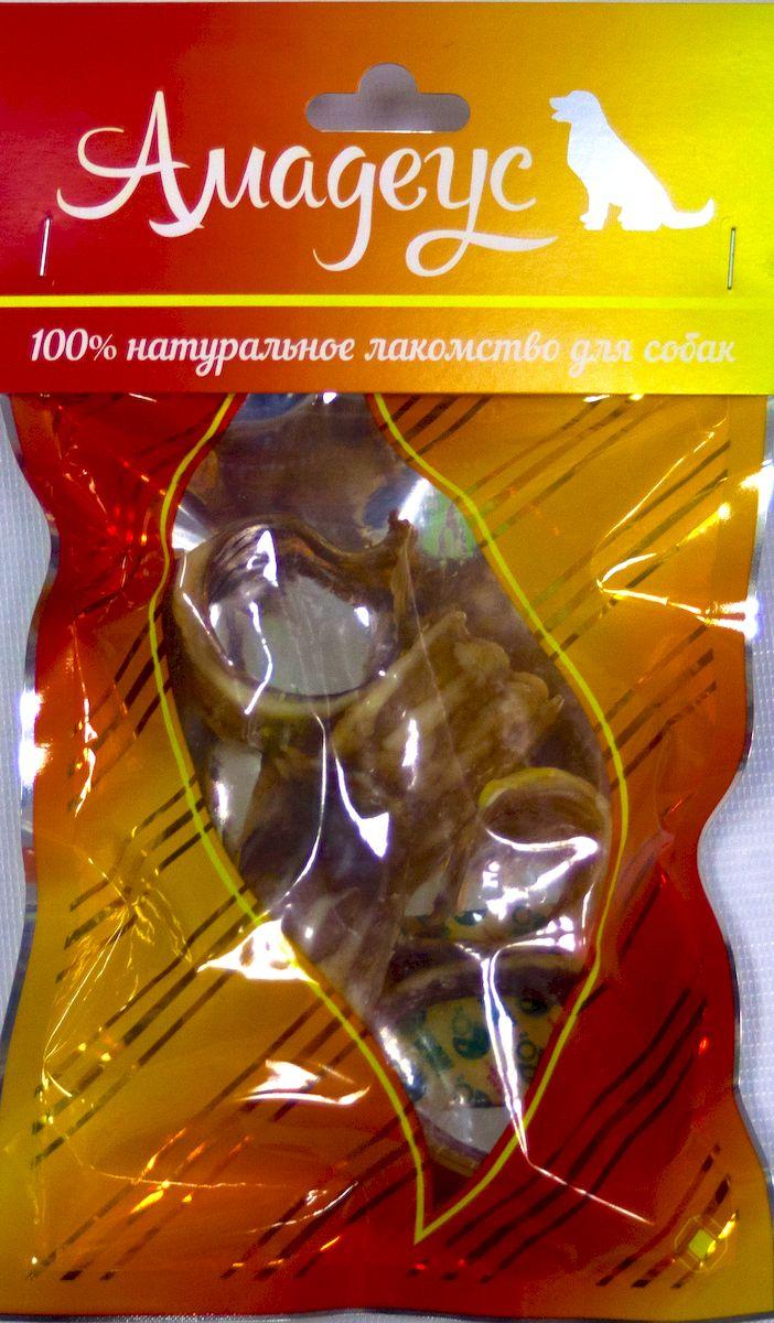 Лакомство для собак Амадеус Трахея большая колечками говяжья, 5 шт58540Лакомство для собак Амадеус Трахея большая колечками говяжья - 100% натуральный продукт почти без запаха, а также без содержания химических добавок. При сушке не использовались отбеливатели и консерванты. Лакомство изготавливается из тщательно отобранного и проверенного высококачественного отечественного сырья. Содержит низкокалорийный, легкоусвояемый, гипоаллергенный белок. Продукт богат витаминами и ферментами микрофлоры желудка жвачных животных. В упаковке 5 колечек трахеи. Рекомендовано для профилактики витаминного и ферментного дефицита у собак и кошек всех пород и возрастов. Товар сертифицирован.
