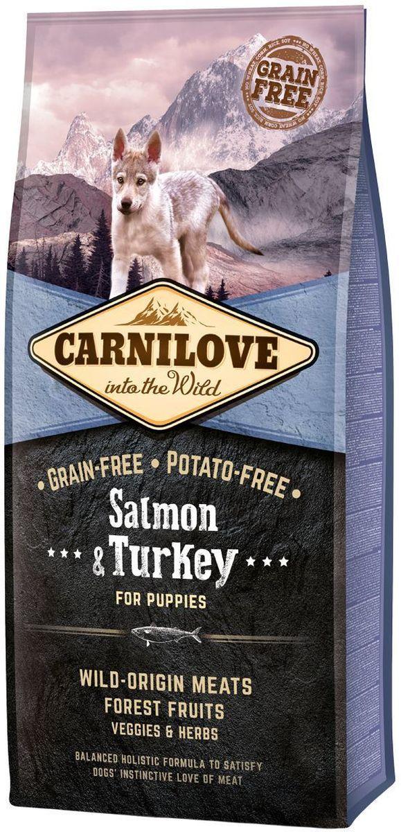 Корм сухой Carnilove, для щенков, беззерновой, с лососем и индейкой, 12 кг150815Сбалансированный полнорационный сухой беззерновой корм для щенков крупных пород (? 25 кг, 3 – 30 месяцев). Cостав: мука из лосося (25%), мука из индейки (20%), желтый горох (18%), куриный жир (консервирован токоферолами, источником витамина е, 9%), цельные яйца (5%), гидролизованный куриный протеин (5%), крахмал из тапиоки (5%), яблоки (3%), куриная печень (3%), рыбий жир лососевый (2%), морковь (1%), льняное семя (1%), нут (1%), гидролизованные панцири ракообразных (источник глюкозамина, 0,031%), экстракт хряща (источник хондроитина, 0,019%), пивные дрожжи (источник маннан-олигосахаридов, 0,018%), корень цикория (источник фрукто-олигосахаридов, 0,012%), юкка шидигера (0,011%), водоросли (0,01%), псиллиум (0,01%), тимьян (0,01%), розмарин (0,01%), орегано (0,01%), клюква (0,0008%), голубика (0,0008%), малина (0,0008%).