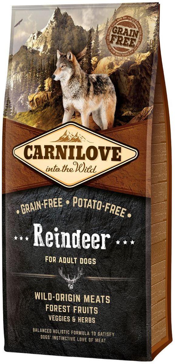 Корм сухой Carnilove, для собак, беззерновой, с мясом северного оленя, 12 кг150820Сбалансированный полнорационный сухой беззерновой корм для взрослых собак всех пород. Cостав: мука из мяса северного оленя (28%), мука из мяса дикого кабана (22%), желтый горох (20%), куриный жир (консервирован токоферолами, 9%), мука из утки (6%), куриная печень (3%), яблоки (3%), крахмал из тапиоки (3%), рыбий жир лососевый (2%), морковь (1%), льняное семя (1%), нут (1%), гидролизованные панцири ракообразных (источник глюкозамина, 0,026%), экстракт хряща (источник хондроитина, 0,016%), пивные дрожжи (источник маннан-олигосахаридов, 0,015%), корень цикория (источник фрукто-олигосахаридов, 0,01%), юкка шидигера (0,01%), водоросли (0,01%), псиллиум (0,01%), тимьян (0,01%), розмарин (0,01%), орегано (0,01%), клюква (0,0008%), голубика (0,0008%), малина (0,0008%).