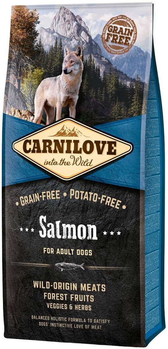 Корм сухой Carnilove, для собак, беззерновой, с лососем, 12 кг150819Сбалансированный полнорационный сухой беззерновой корм для взрослых собак всех пород. Cостав: мука из лосося (25%), филе лосося (20%), желтый горох (20%), мука из сельди (10%), куриный жир (консервирован токоферолами, 9%), куриная печень (3%), яблоки (3%), крахмал из тапиоки (3%), рыбий жир лососевый (3%), морковь (1%), льняное семя (1%), нут (1%), гидролизованные панцири ракообразных (источник глюкозамина, 0,026%), экстракт хряща (источник хондроитина, 0,016%), пивные дрожжи (источник маннан-олигосахаридов, 0,015%), корень цикория (источник фрукто-олигосахаридов, 0,01%), юкка шидигера (0,01%), водоросли (0,01%), псиллиум (0,01%), тимьян (0,01%), розмарин (0,01%), орегано (0,01%), клюква (0,0008%), голубика (0,0008%), малина (0,0008%).