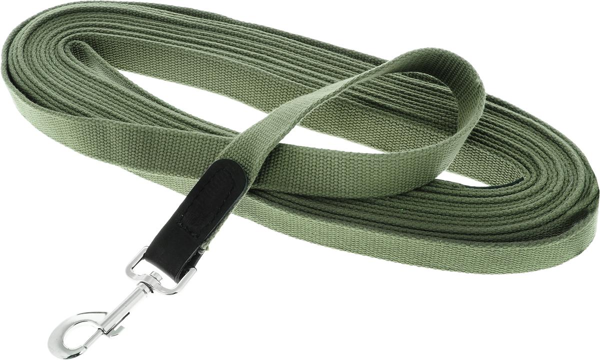 Поводок брезентовый для собак Каскад Классика, цвет: зеленый, ширина 2,5 см, длина 10 м2125016_классикаПоводок для собак Каскад Классика, изготовленный из высококачественной брезентовой ткани, снабжен металлическим карабином и вставкой из искусственной кожи. Изделие отличается не только исключительной надежностью и удобством, но и привлекательным дизайном. Поводок - необходимый аксессуар для собаки. Ведь в опасных ситуациях именно он способен спасти жизнь вашему любимому питомцу. Иногда нужно ограничивать свободу своего четвероногого друга, чтобы защитить его или себя от неприятностей на прогулке. Длина поводка: 10 м. Ширина поводка: 2,5 см.