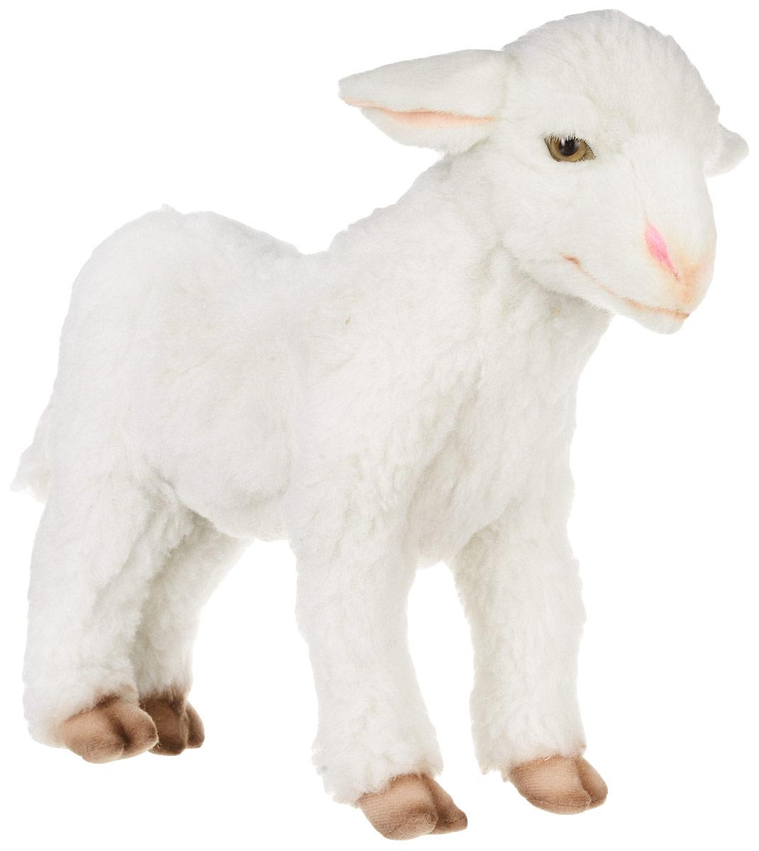 Hansa Toys Мягкая игрушка Ягненок 28 см 65626562Домашний баран (самка называется овца, детеныш - ягненок) - парнокопытное, млекопитающее из рода баранов, семейства полорогих. Эти очень полезные животные были одомашнены уже в глубокой древности. Из их густой мягкой шерсти изготавливают ткани, шьют одежду и одеяла. Некоторые породы овец разводятся ради мяса. Жители многих стран мира пьют овечье молоко, из которого, кроме того, изготавливают сыр. Домашние овцы живут большими стадами - отарами. Отару возглавляет старый баран, за которым, послушно повинуясь древним инстинктам, следуют все остальные члены стада. Пасти овец людям нередко помогают специально обученные собаки некоторых пород. Но на воле живут дикие бараны, они обитают в Австралии, Новой Зеландии и Южной Америке. Мягкая игрушка Hansa Toys Ягненок обязательно понравится вам и вашему малышу и познакомит вас с этим удивительным животным.
