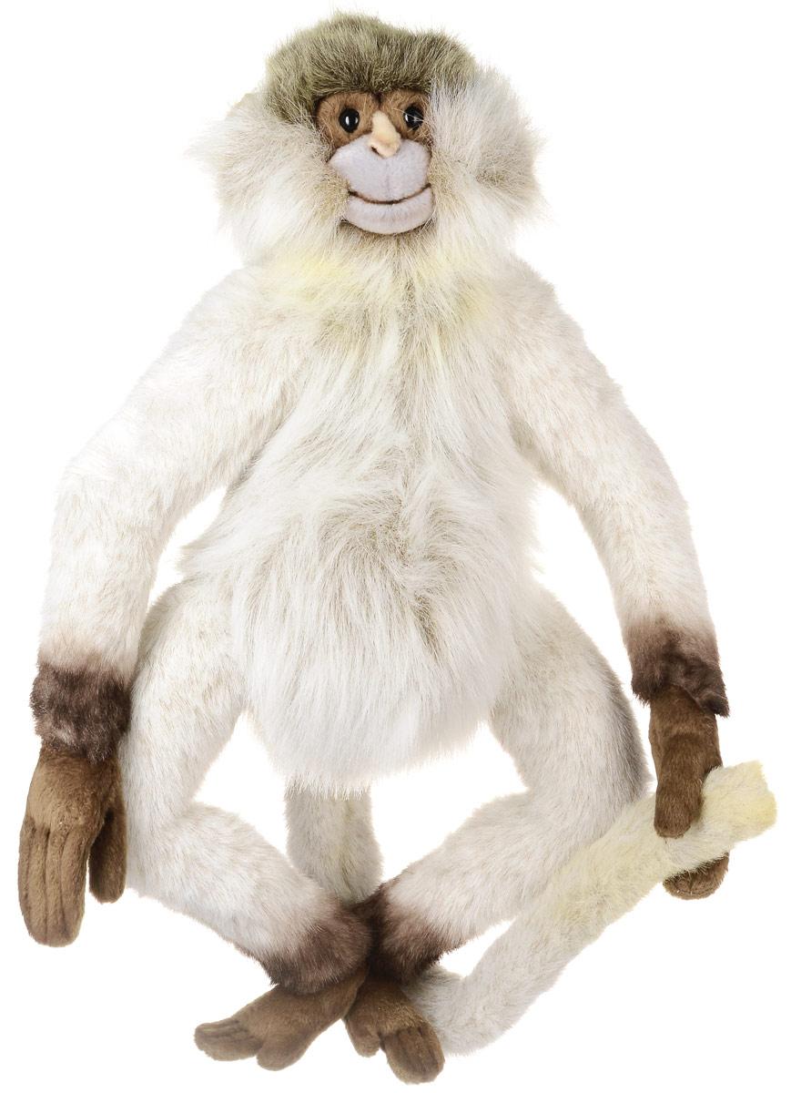 Hansa Toys Мягкая игрушка Паукообразная обезьяна 44 см3934ПОбезьянами называются все представители отряда приматов, кроме человека. Большинство обезьян живут на деревьях, их пищу составляют в основном листья, фрукты и насекомые. Все обезьяны хорошо лазают. Передние конечности у них свободно вращаются. Большие пальцы на передних и задних лапах противопоставлены остальным, то есть все конечности хватательные, приспособленные для жизни на деревьях. Большинство обезьян всеядны и питаются насекомыми, ракообразными, птичьими яйцами, плодами, семенами, листьями деревьев, молодыми побегами и травой. Обезьяны наиболее многочисленны и разнообразны в тропических и субтропических областях, особенно на равнинах вблизи водоемов. После семи месяцев беременности у обезьян рождается один детеныш, родители заботятся о малыше от двух месяцев до двух лет, в зависимости от вида. Мягкая игрушка Hansa Toys Паукообразная обезьяна обязательно понравится вам и вашему малышу, а также познакомит вас с этим животным.