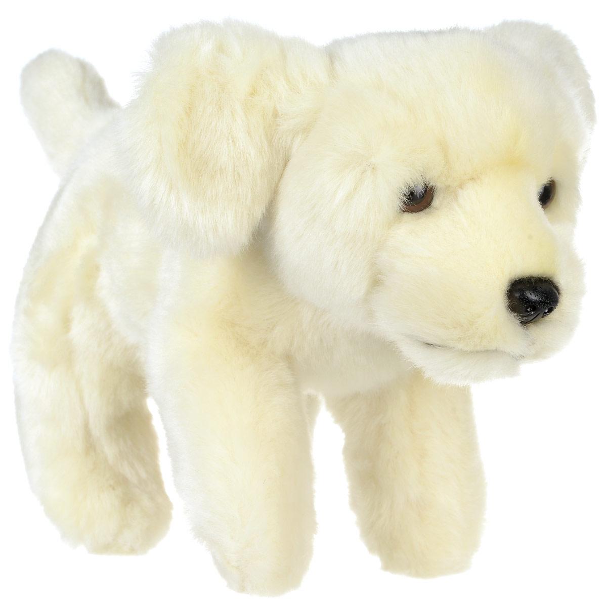 Hansa Toys Мягкая игрушка Лабрадор 22 см3977Лабрадор-ретривер является одной из самых популярных пород собак. Первоначально эта парода была выведена в качестве рабочей собаки, поэтому многие лабрадоры все еще используются в качестве подружейных собак, собак-поводырей, собак-спасателей. Порода берет свое начало на острове Ньюфаундленд на восточном побережье Канады. Эти собаки отличаются отсутствием агрессии к людям и другим животным. Мягкая игрушка Hansa Toys Лабрадор обязательно понравится вам и вашему малышу, а также познакомит вас с этим животным.