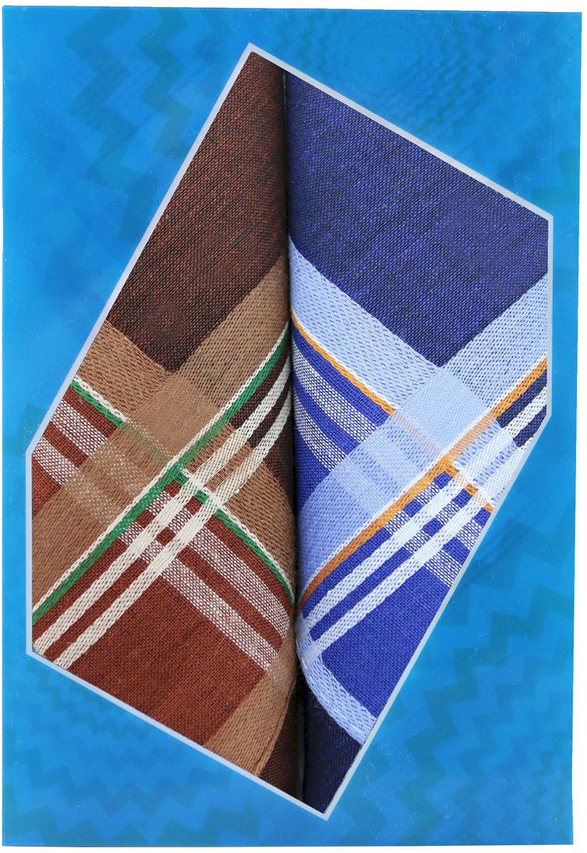 Платок носовой мужской Zlata Korunka, цвет: мультиколор, 2 шт. 40213-21. Размер 38 х 38 см40213-21Платки носовые мужские в упаковке по 2 шт. Носовые платки изготовлены из 100% хлопка, так как этот материал приятен в использовании, хорошо стирается, не садится, отлично впитывает влагу. Размер: 28 х 28..