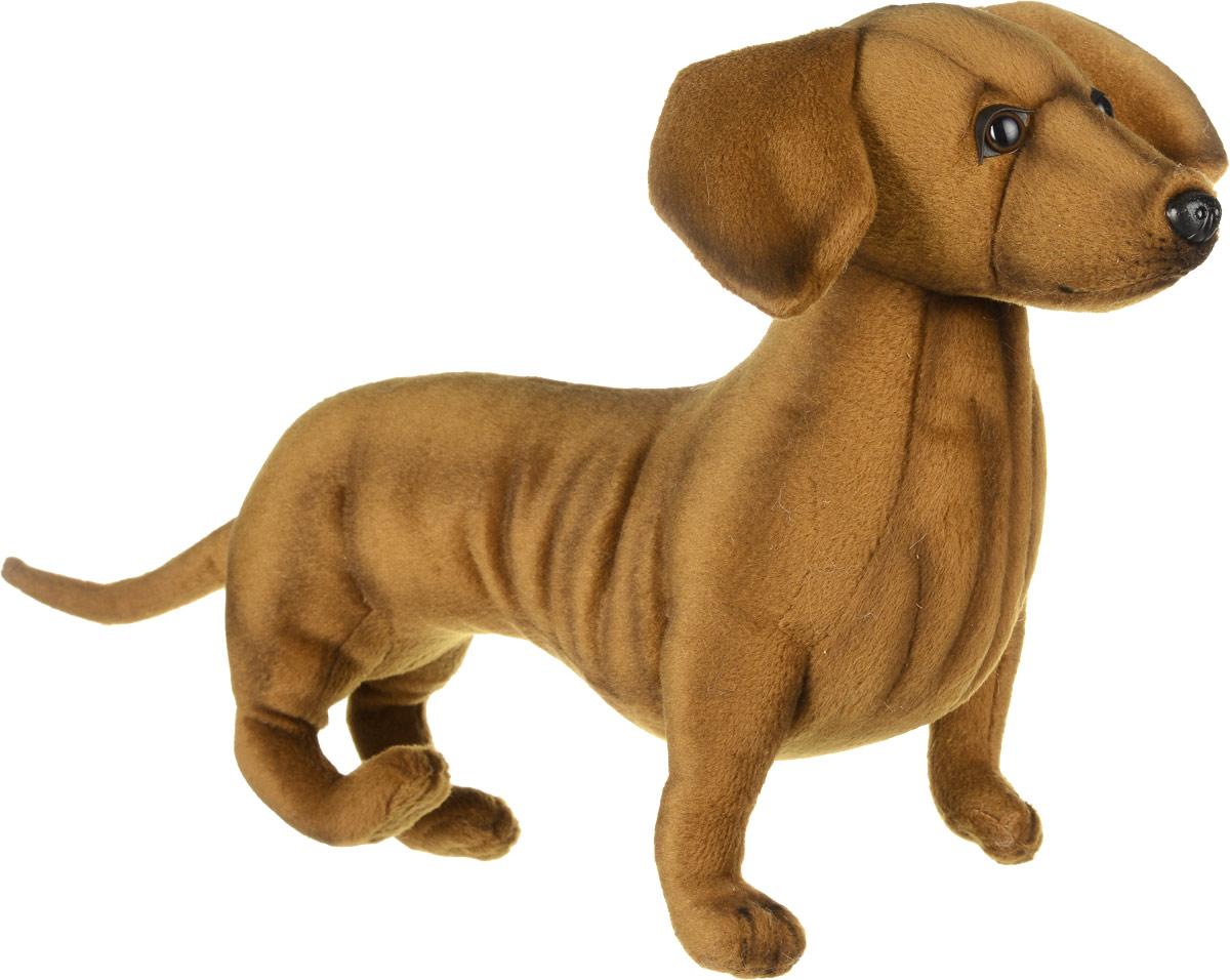 Hansa Toys Мягкая игрушка Такса 42 см6420Такса дружелюбная, активная, энергичная, с уравновешенным темпераментом и чувством собственного достоинства. Азартная, вязкая, любопытная и неутомимая охотничья собака с превосходным чутьем. Такса работает по барсуку, лисице, еноту, если надо, подаст утку из водоема, предупредит о кабане или медведе. Это собака с громким голосом, отважная, с охранными качествами, смелая, серьезная, целеустремленная и самостоятельная. Владельцы такс отмечают уникальную особенность своих собак - наличие чувства юмора. Мягкая игрушка Hansa Toys Такса обязательно понравится вам и вашему малышу, а также познакомит вас с этим животным.