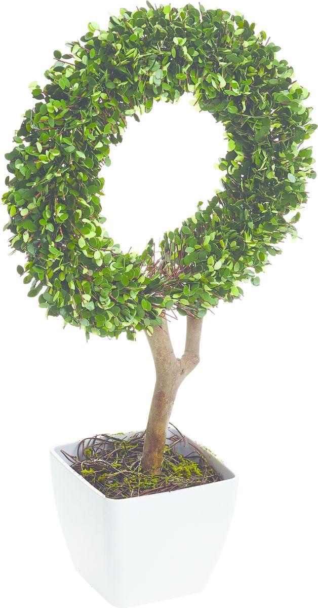 Растение искусственное Gardman Кольцо, со светодиодами, 45 см02868Растение, освещенное 10 светодиодами, можно расположить как внутри, так и снаружи помещения. Растение оснащено таймером: автоматическое включение на 6 часов -выключение на 18 часов. Работает от 3 батареек АА ( в комплект не включены)