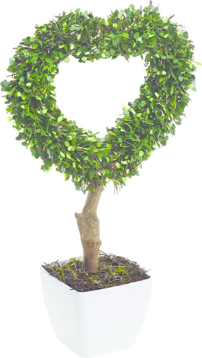 Растение искусственное Gardman Сердце, со светодиодами, 42 см02866Растение, освещенное 10 светодиодами, можно расположить как внутри, так и снаружи помещения. Растение оснащено таймером: автоматическое включение на 6 часов -выключение на 18 часов. Работает от 3 батареек АА ( в комплект не включены)