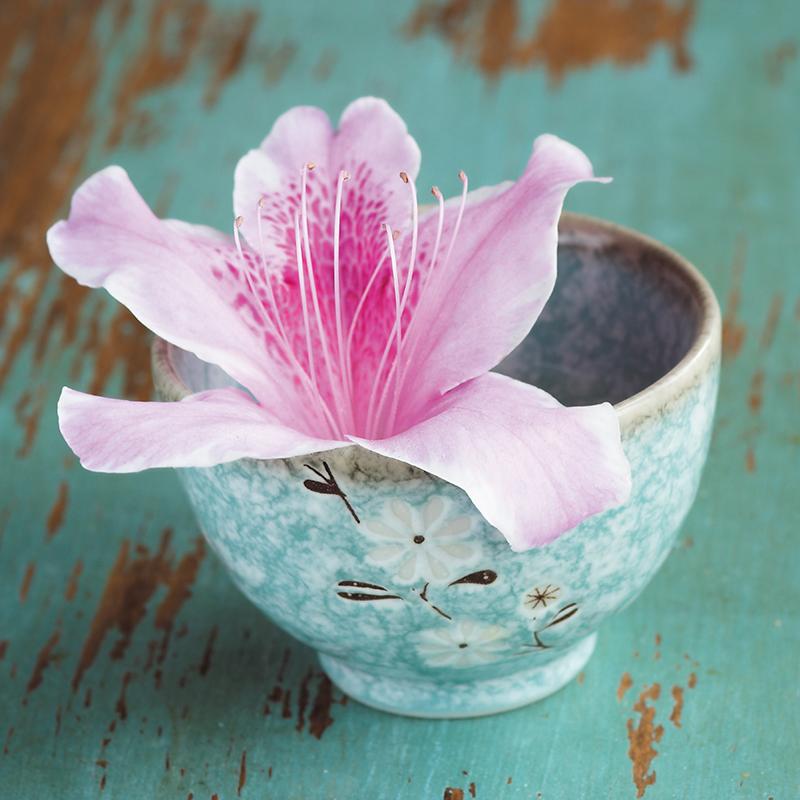 Картина Postermarket Цветок азалии, 30 х 30 см. AG 30-21AG 30-21