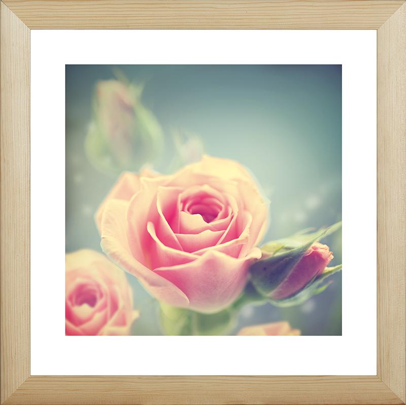 Картина Postermarket Розовые розы, 40 х 40 см. MC-46MC-46Картина Postermarket Розовые розы прекрасно подойдет для декора интерьера различных помещений. Постер, выполненный в технике фотопечать, обрамлен паспарту и оформлен багетом бежевого цвета. Картина для интерьера (постер) - это современное и актуальное направление в дизайне помещений. Ее можно использовать для оформления любых помещений (дом, квартира, офис, бар, кафе, ресторан или гостиница). работоспособность. Правильное оформление интерьера создает благоприятный психологический климат, улучшает настроение и мотивирует. Размер картины: 400 x 400 мм.