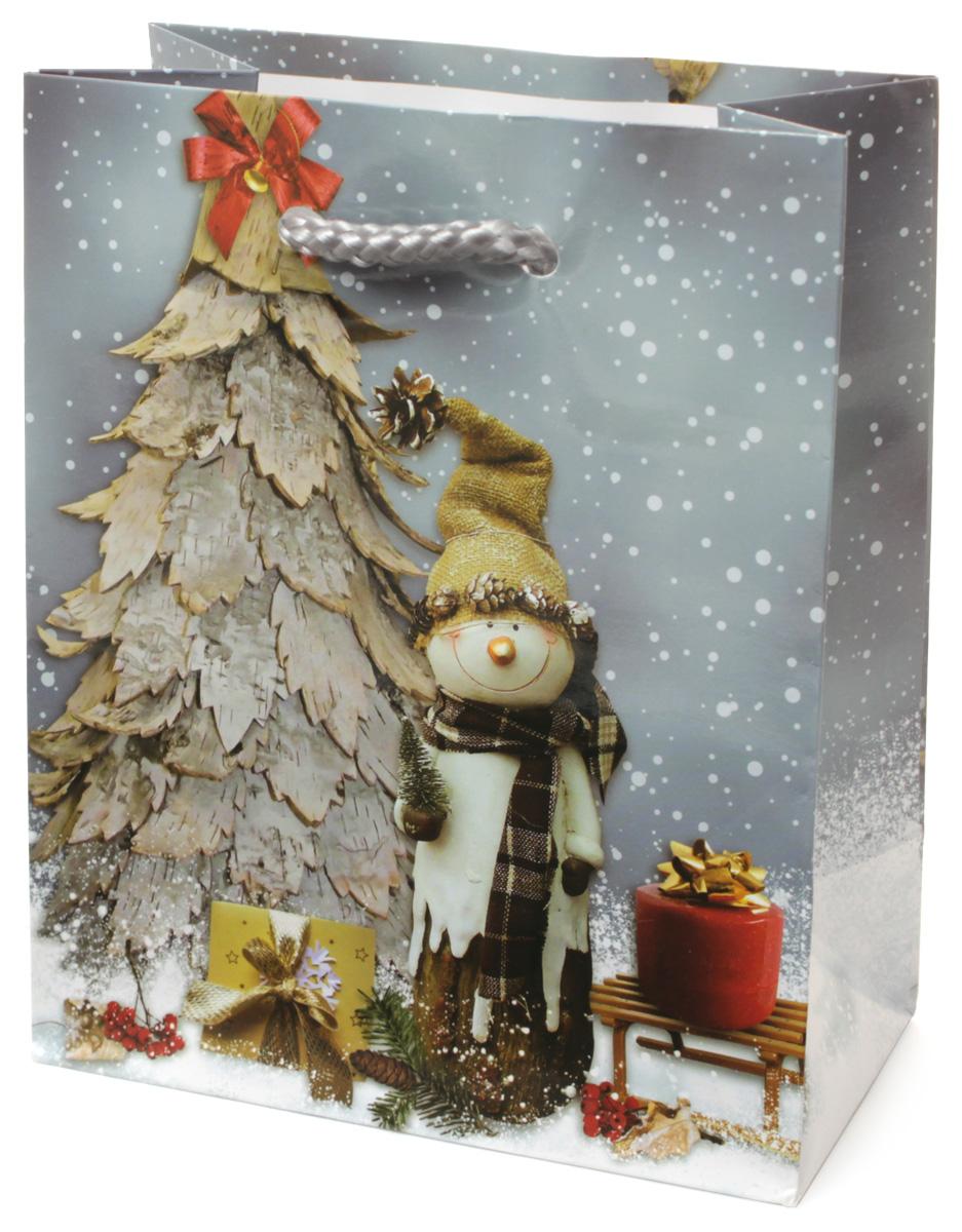 Пакет подарочный МегаМАГ Новый год, 11 х 13,7 х 6 см. 1053 S1053 SПодарочный пакет МегаМАГ, изготовленный из плотной ламинированной бумаги, станет незаменимым дополнением к выбранному подарку. Для удобной переноски на пакете имеются две ручки-шнурки. Подарок, преподнесенный в оригинальной упаковке, всегда будет самым эффектным и запоминающимся. Окружите близких людей вниманием и заботой, вручив презент в нарядном, праздничном оформлении.