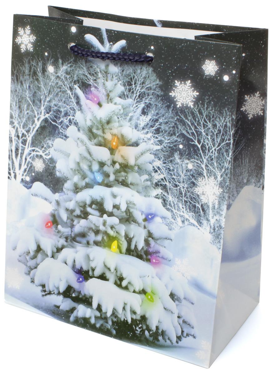 Пакет подарочный МегаМАГ Новый год, 18 х 22,7 х 10 см. 2111 M2111 MПодарочный пакет МегаМАГ, изготовленный из плотной ламинированной бумаги, станет незаменимым дополнением к выбранному подарку. Для удобной переноски на пакете имеются две ручки-шнурки. Подарок, преподнесенный в оригинальной упаковке, всегда будет самым эффектным и запоминающимся. Окружите близких людей вниманием и заботой, вручив презент в нарядном, праздничном оформлении.