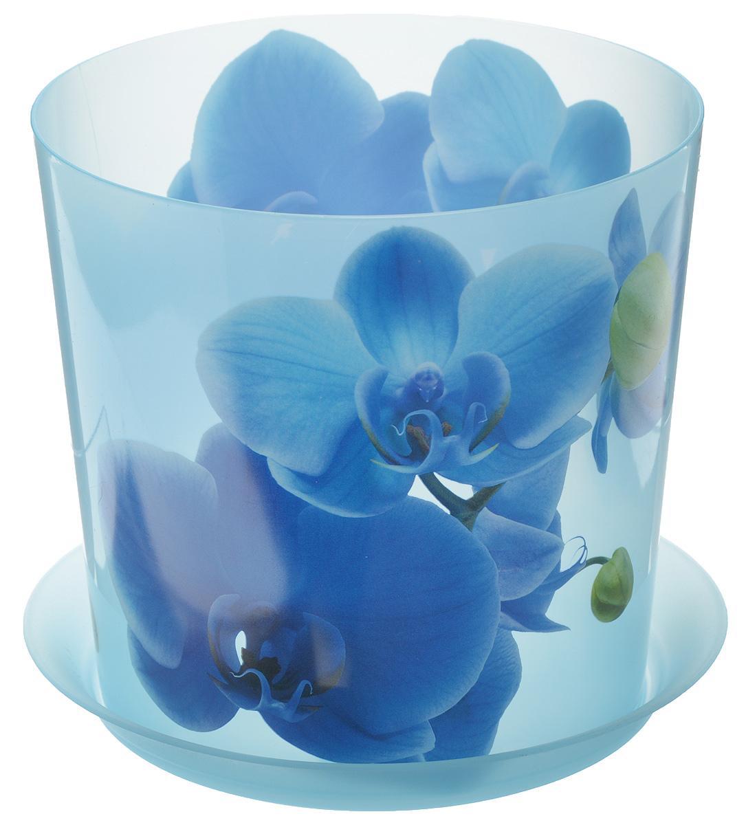 Кашпо Idea Деко, с подставкой, цвет: голубой, 2,4 лМ 3106Кашпо Idea Деко изготовлено из высококачественного полипропилена. Специальный поддон предназначен для стока воды. Изделие прекрасно подходит для выращивания растений и цветов в домашних условиях. Лаконичный дизайн впишется в интерьер любого помещения. Диаметр поддона: 17,5 см. Диаметр кашпо по верхнему краю: 16 см. Высота кашпо: 15 см. Объем кашпо: 2,4 л.