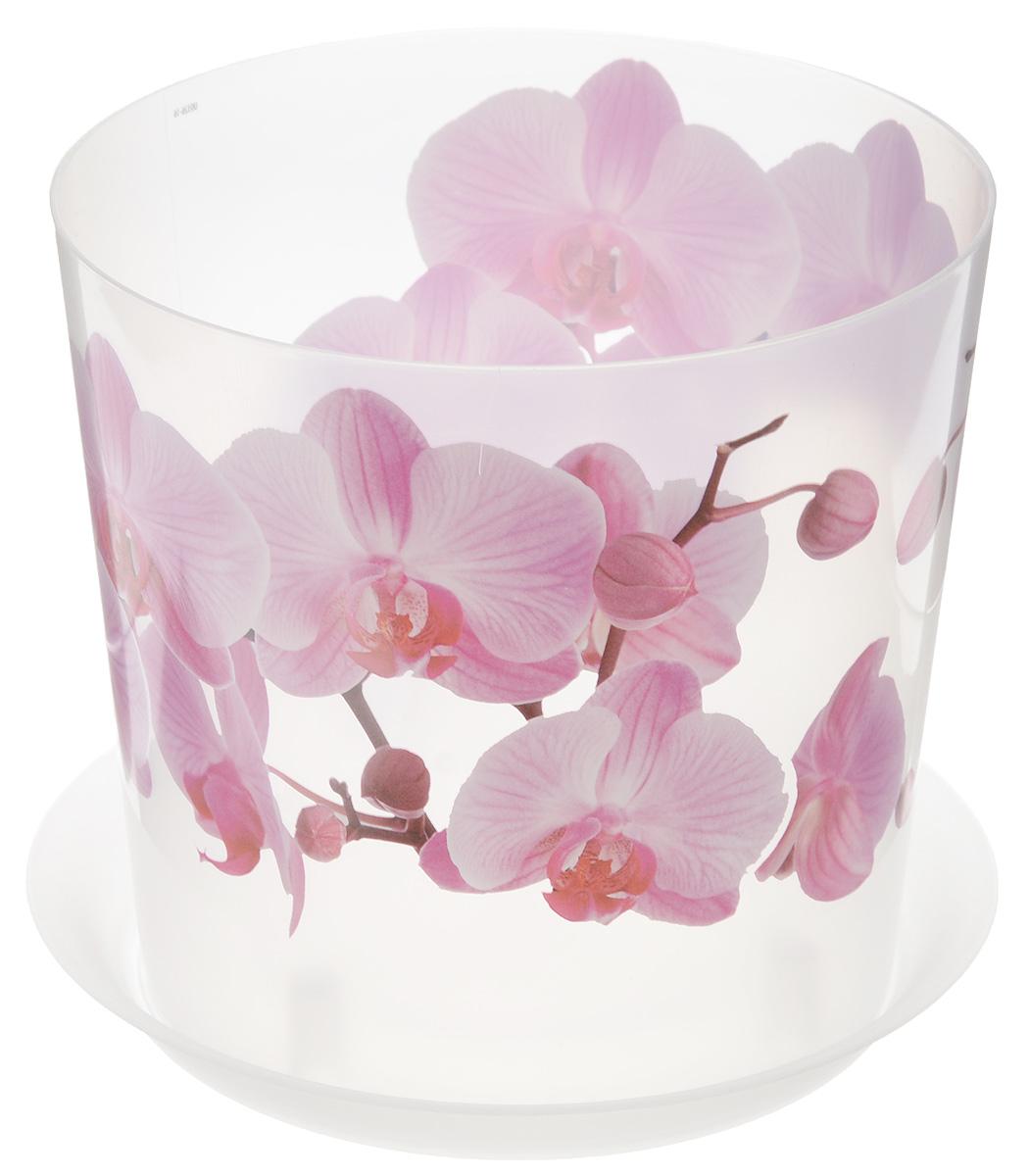 Кашпо Idea Деко, с подставкой, цвет: прозрачный, розовый, 2,4 лМ 3106Кашпо Idea Деко изготовлено из высококачественного полипропилена. Специальный поддон предназначен для стока воды. Изделие прекрасно подходит для выращивания растений и цветов в домашних условиях. Лаконичный дизайн впишется в интерьер любого помещения. Диаметр поддона: 17,5 см. Диаметр кашпо по верхнему краю: 16 см. Высота кашпо: 15 см. Объем кашпо: 2,4 л.