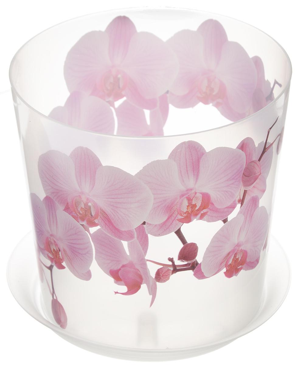 Кашпо Idea Деко, с подставкой, цвет: прозрачный, розовый, 1,2 лМ 3105Кашпо Idea Деко изготовлено из высококачественного полипропилена. Специальный поддон предназначен для стока воды. Изделие прекрасно подходит для выращивания растений и цветов в домашних условиях. Лаконичный дизайн впишется в интерьер любого помещения. Диаметр поддона: 13,5 см. Диаметр кашпо по верхнему краю: 12,5 см. Высота кашпо: 12 см. Объем кашпо: 1,2 л.