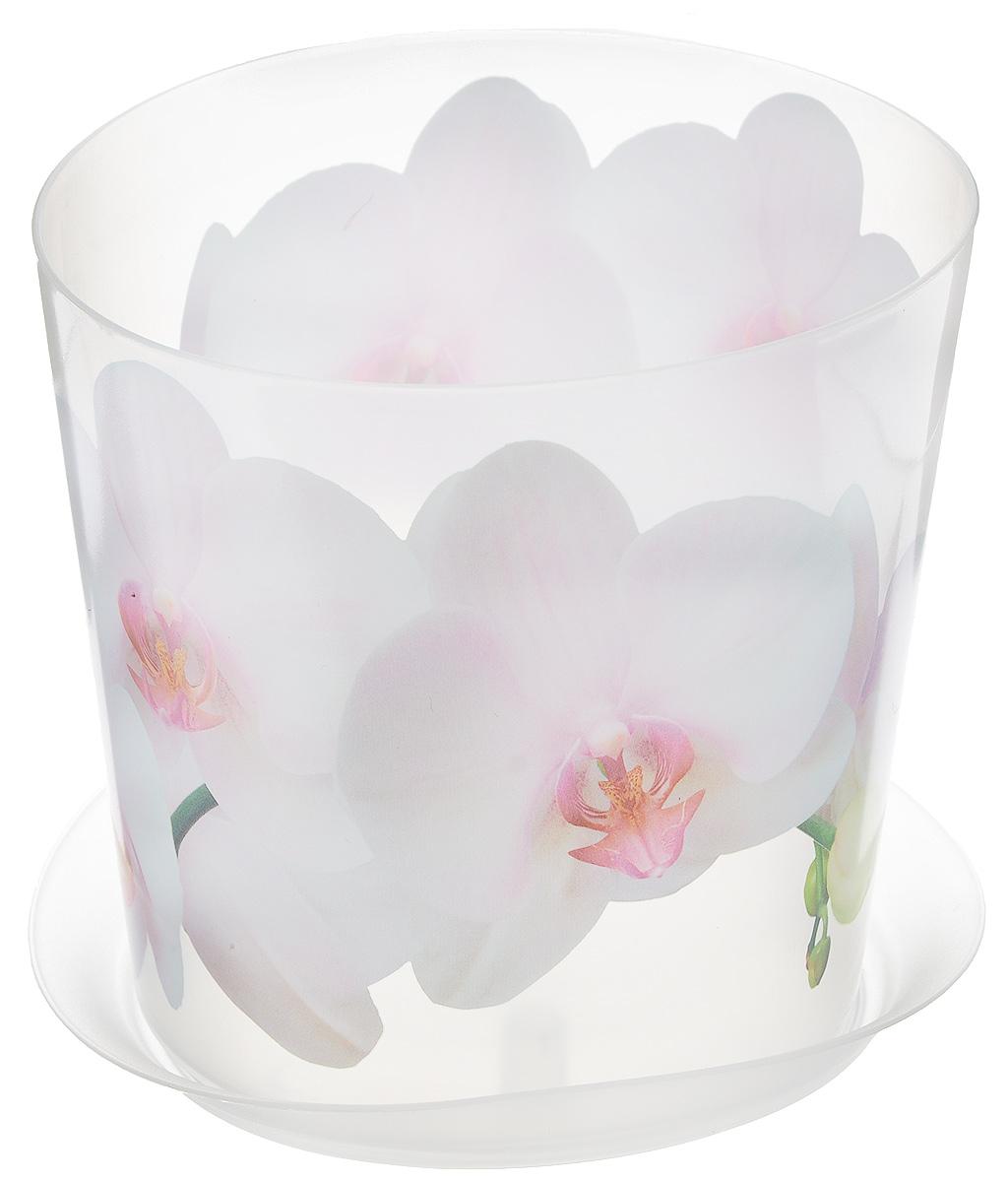 Кашпо Idea Деко, с подставкой, цвет: прозрачный, белый, 1,2 лМ 3105Кашпо Idea Деко изготовлено из высококачественного полипропилена. Специальный поддон предназначен для стока воды. Изделие прекрасно подходит для выращивания растений и цветов в домашних условиях. Лаконичный дизайн впишется в интерьер любого помещения. Диаметр поддона: 13,5 см. Диаметр кашпо по верхнему краю: 12,5 см. Высота кашпо: 12 см. Объем кашпо: 1,2 л.