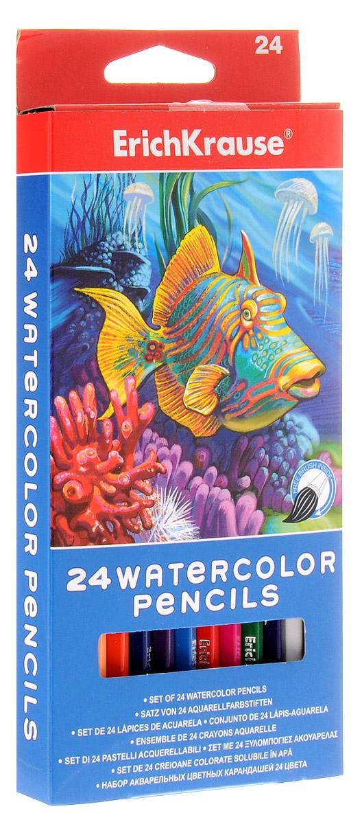 Erich Krause Набор цветных акварельных карандашей с кисточкой 24 шт
