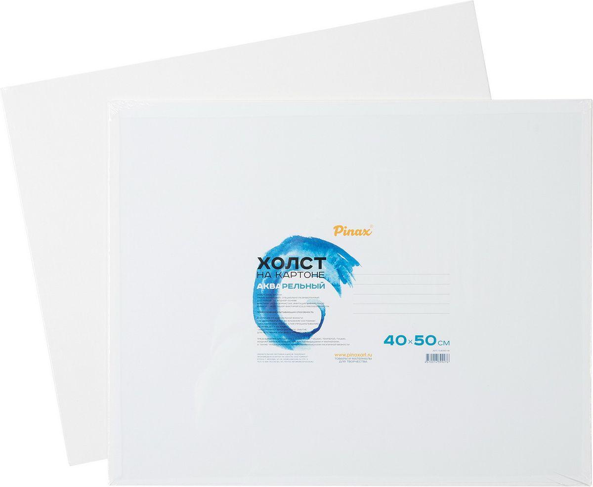 Pinax Холст акварельный на картоне 40 х 50 см