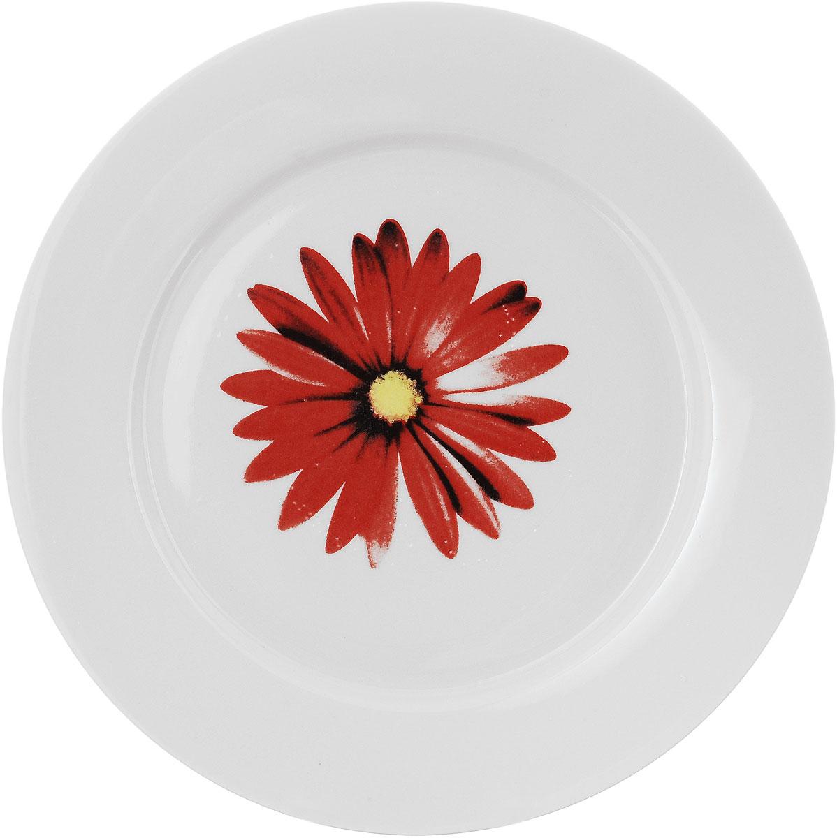 Тарелка Фарфор Вербилок Ромашка, диаметр 24 см16580810Тарелка Фарфор Вербилок Ромашка, изготовленная из высококачественного фарфора, имеет классическую круглую форму. Она прекрасно впишется в интерьер вашей кухни и станет достойным дополнением к кухонному инвентарю. Тарелка Фарфор Вербилок Ромашка подчеркнет прекрасный вкус хозяйки и станет отличным подарком. Диаметр тарелки (по верхнему краю): 24 см.
