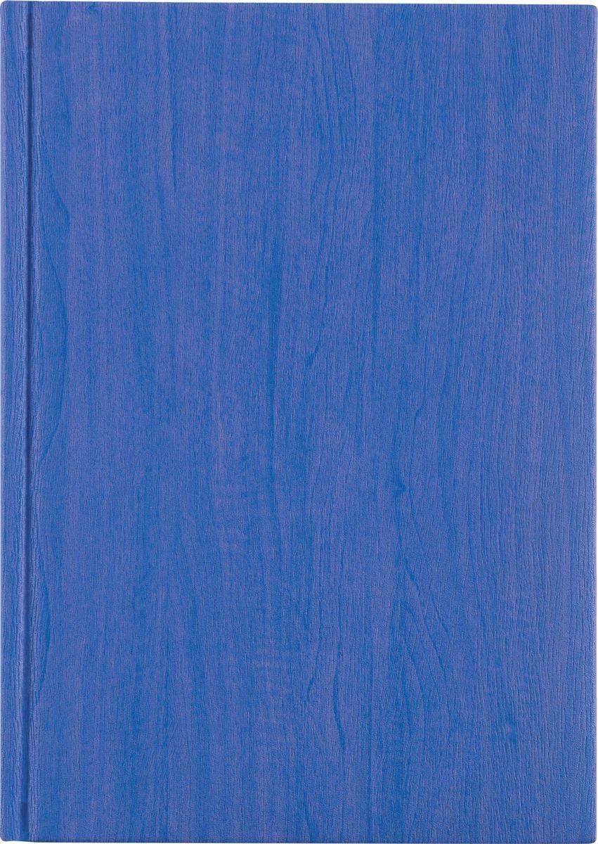 Erich Krause Ежедневник Acero недатированный 176 листов цвет синий 40696