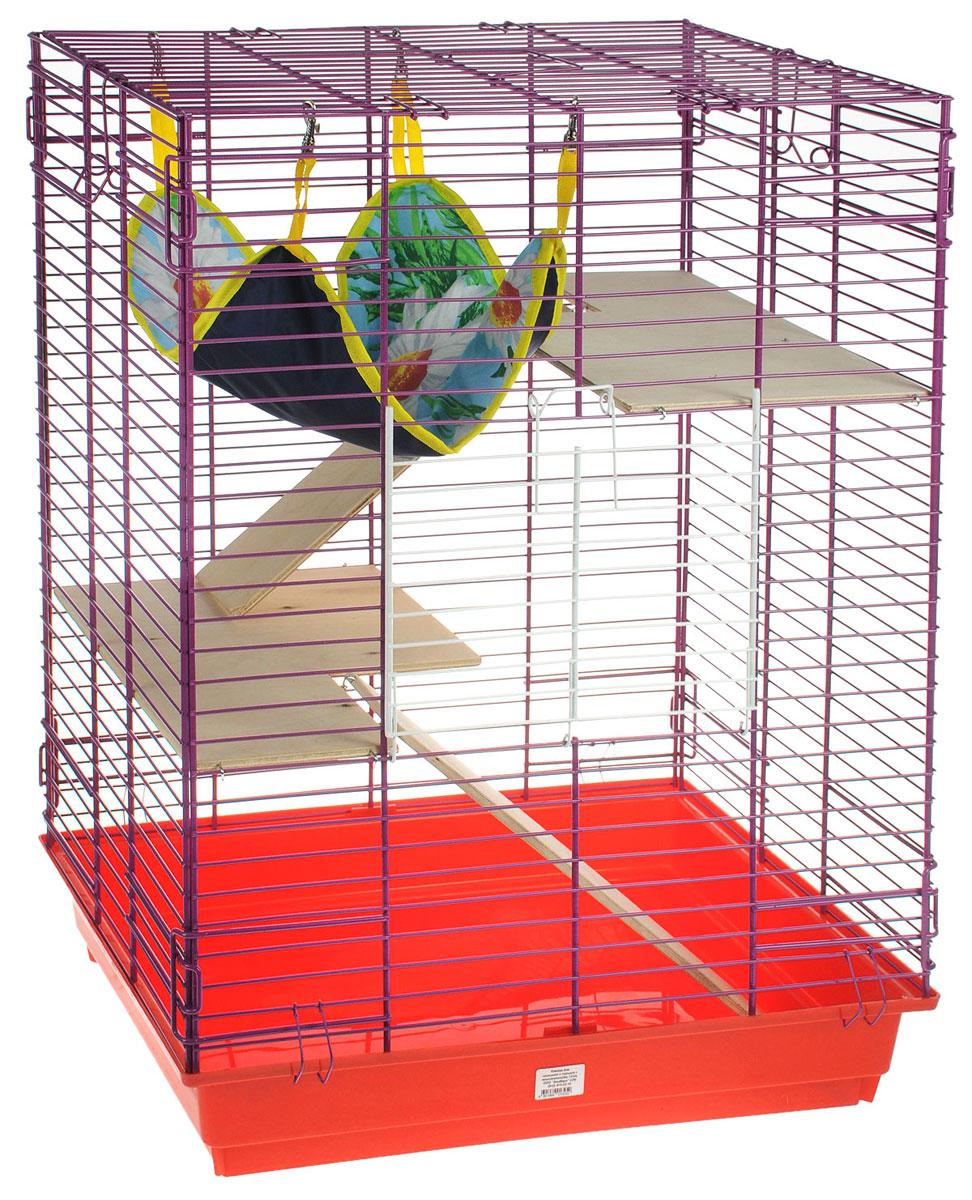 Клетка для шиншилл и хорьков ЗооМарк, цвет: красный поддон, фиолетовая решетка, 59 х 41 х 79 см. 725дк725дкКФКлетка ЗооМарк, выполненная из полипропилена и металла, подходит для шиншилл и хорьков. Большая клетка оборудована длинными лестницами и гамаком. Изделие имеет яркий поддон, удобно в использовании и легко чистится. Сверху имеется ручка для переноски. Такая клетка станет уединенным личным пространством и уютным домиком для грызуна.