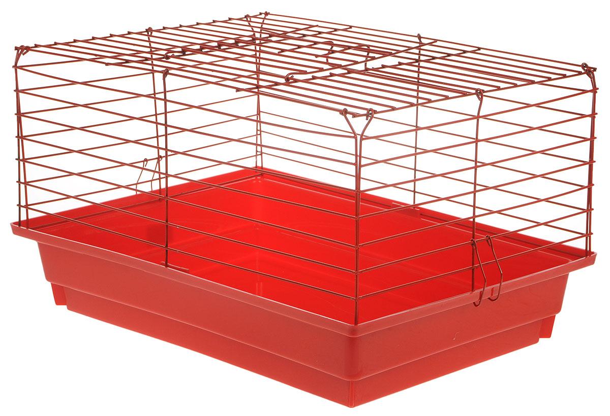 Клетка для кроликов ЗооМарк, цвет: красный поддон, красная решетка, 50 х 35 х 29 см610КККлетка для кроликов ЗооМарк, выполненная из металла и пластика, предназначена для содержания вашего любимца. Клетка имеет прямоугольную форму, очень просторна, оснащена съемным поддоном. Она очень легко собирается и разбирается. Такая клетка станет для вашего питомца уютным домиком и надежным убежищем.