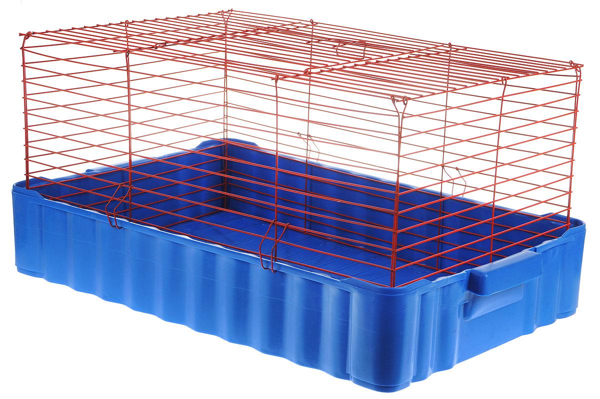 Клетка для кроликов ЗооМарк, цвет: синий поддон, красная решетка, 75 х 46 х 40 см640СККлетка для кроликов ЗооМарк, выполненная из металла и пластика, предназначена для содержания вашего любимца. Клетка имеет прямоугольную форму и очень просторна. Размеры позволят оснастить клетку всеми необходимыми предметами. Она очень легко собирается и разбирается. Такая клетка станет для вашего питомца уютным домиком и надежным убежищем.