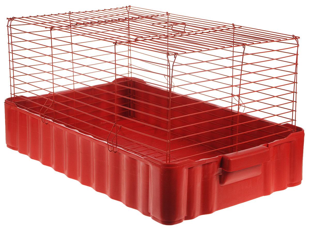 Клетка для кроликов ЗооМарк, цвет: красный поддон, красная решетка, 75 х 46 х 40 см640КККлетка для кроликов ЗооМарк, выполненная из металла и пластика, предназначена для содержания вашего любимца. Клетка имеет прямоугольную форму и очень просторна. Размеры позволят оснастить клетку всеми необходимыми предметами. Она очень легко собирается и разбирается. Такая клетка станет для вашего питомца уютным домиком и надежным убежищем.