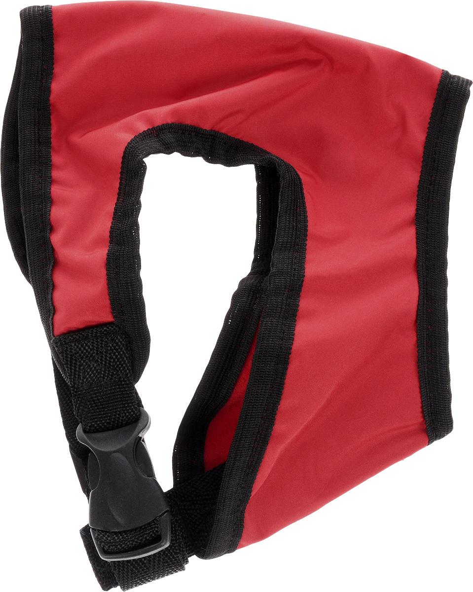 Шлейка для собак ЗооМарк, цвет: красный, черный. Размер: 1Ш-1_красный, черныйШлейка для собак ЗооМарк выполнена из плащевки, а на подкладке используется флис. Изделие оснащено специальным крючком, к которому вы с легкостью сможете прикрепить поводок. Шлейка имеет застежку фастекс и регулируется при помощи пряжки. Шлейка - это альтернатива ошейнику. Правильно подобранная шлейка не стесняет движения питомца, не натирает кожу, поэтому животное чувствует себя в ней уверенно и комфортно. Изделие отличается высоким качеством, удобством и универсальностью. Обхват груди: 22-25 см. Длина спинки: 14 см. Ширина ремней: 2 см.