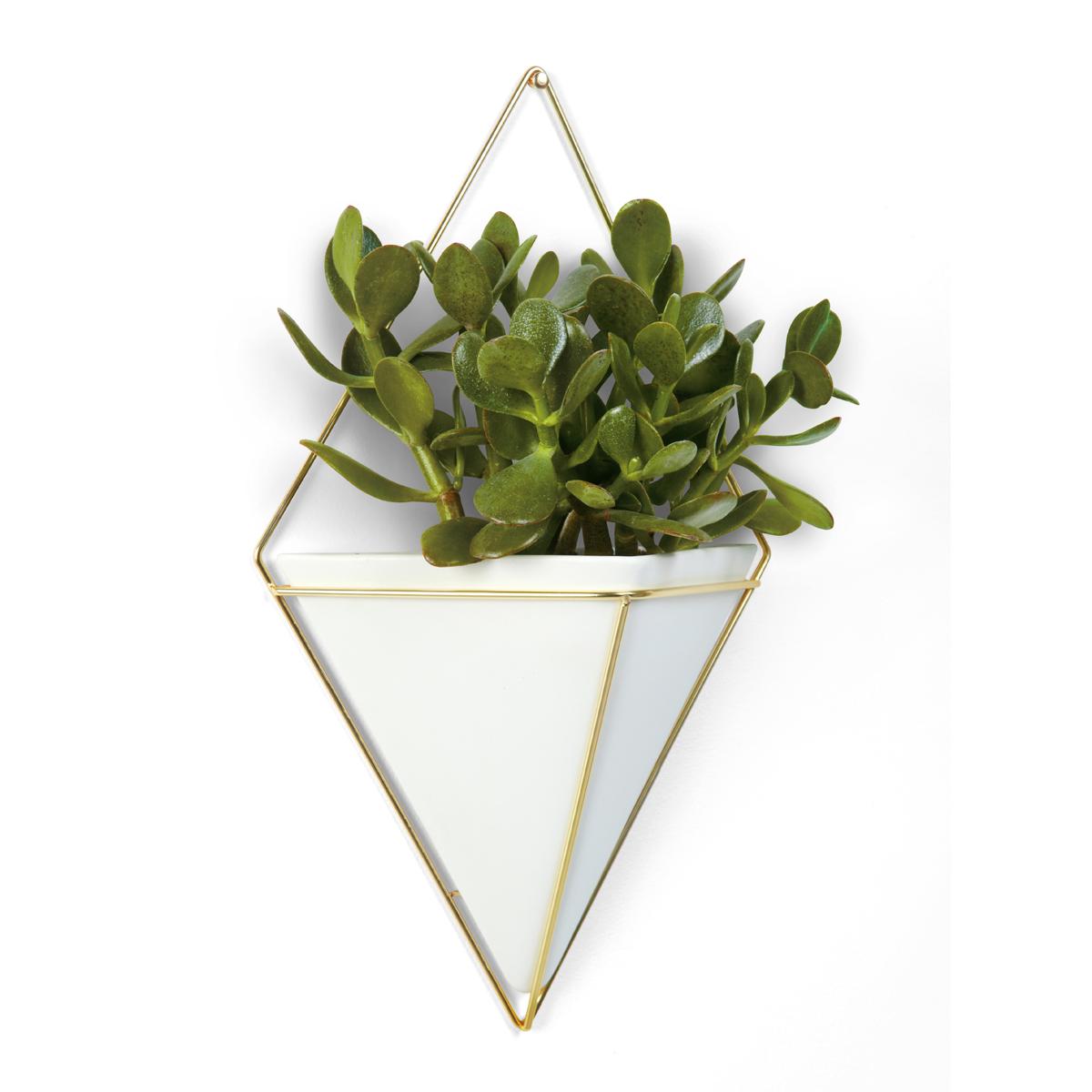 Декоративное украшение Umbra Trigg, настенное, цвет: белый470752-524Строгие геометрические формы не ограничивают воображение, а наоборот, вдохновляют на творчество и создание неповторимых интерьеров. Такой просто и такой эффектный декор сочетает в себе красоту и функциональность: в керамический треугольник можно поместить разные канцелярские мелочи, косметические принадлежности - можно даже использовать его как кашпо! Он вешается на любой гвоздик или вешалку и отлично сочетается с другими декорами, картинами и постерами.