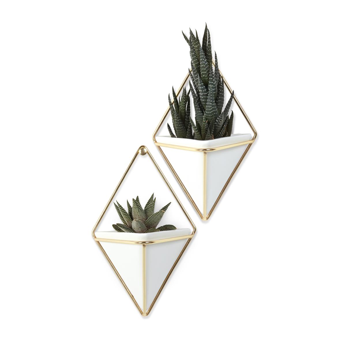 Декоративное украшение Umbra Trigg, настенное, цвет: белый, 2 шт470753-524Строгие геометрические формы не ограничивают воображение, а наоборот, вдохновляют на творчество и создание неповторимых интерьеров. Такой просто и такой эффектный декор сочетает в себе красоту и функциональность: в керамический треугольник можно поместить разные канцелярские мелочи, косметические принадлежности - можно даже использовать его как кашпо! Он вешается на любой гвоздик или вешалку и отлично сочетается с другими декорами, картинами и постерами. В комплекте 2 украшения.