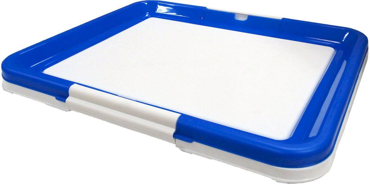 Туалет-лоток OUT!, средний, с фиксатором, цвет: синий, 48х41х3,5 см1902Туалет-лоток (средний) с фиксатором. Цвет: синий