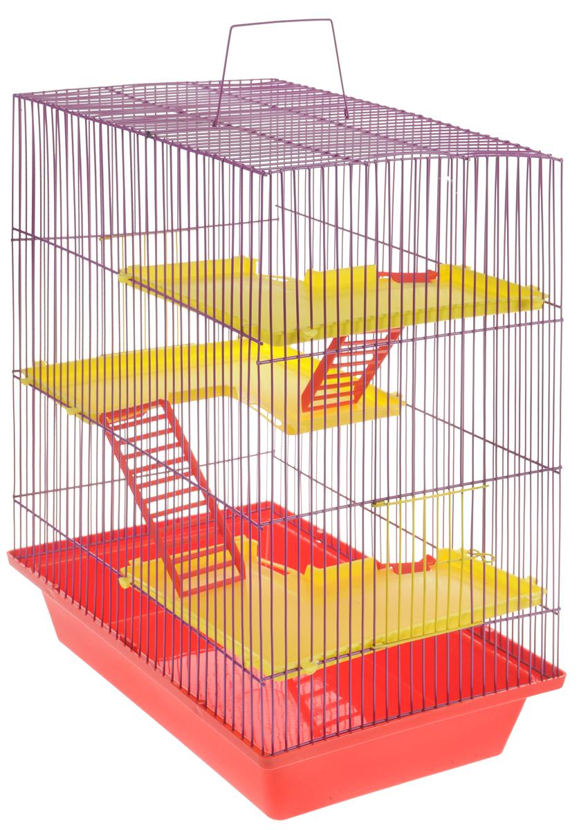 Клетка для грызунов ЗооМарк Гризли, 4-этажная, цвет: красный поддон, фиолетовая решетка, желтые этажи, 41 х 30 х 50 см240КФКлетка ЗооМарк Гризли, выполненная из полипропилена и металла, подходит для мелких грызунов. Изделие четырехэтажное, оборудовано пластиковыми площадками и лестницами. Клетка имеет яркий поддон, удобна в использовании и легко чистится. Сверху имеется ручка для переноски, а сбоку удобная дверца. Такая клетка станет уединенным личным пространством и уютным домиком для маленького грызуна.