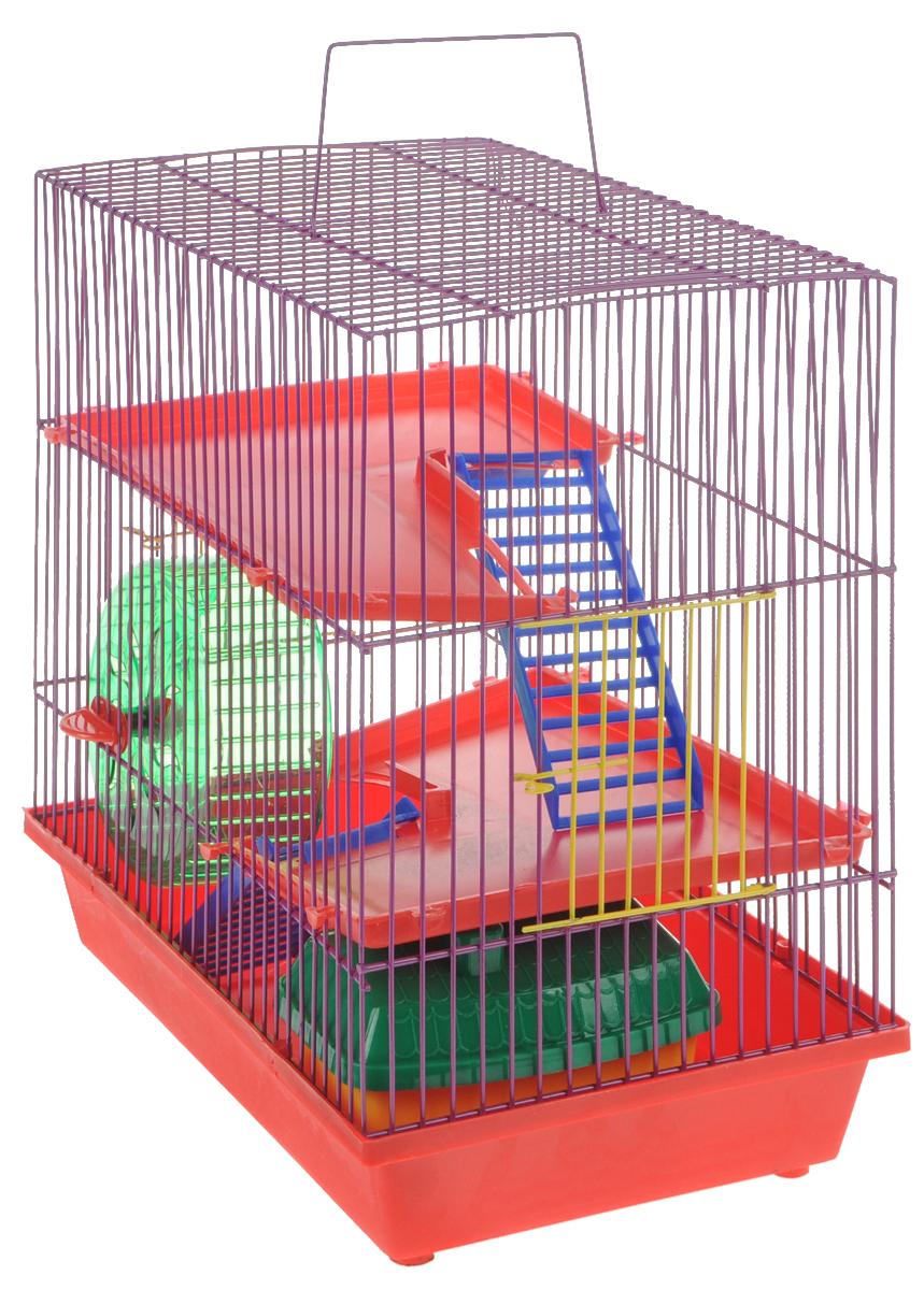 Клетка для грызунов ЗооМарк, 3-этажная, цвет: красный поддон, фиолетовая решетка, красные этажи, 36 х 22,5 х 34 см135КФКлетка ЗооМарк, выполненная из полипропилена и металла, подходит для мелких грызунов. Изделие трехэтажное, оборудовано колесом для подвижных игр и пластиковым домиком. Клетка имеет яркий поддон, удобна в использовании и легко чистится. Сверху имеется ручка для переноски, а сбоку удобная дверца. Такая клетка станет уединенным личным пространством и уютным домиком для маленького грызуна.