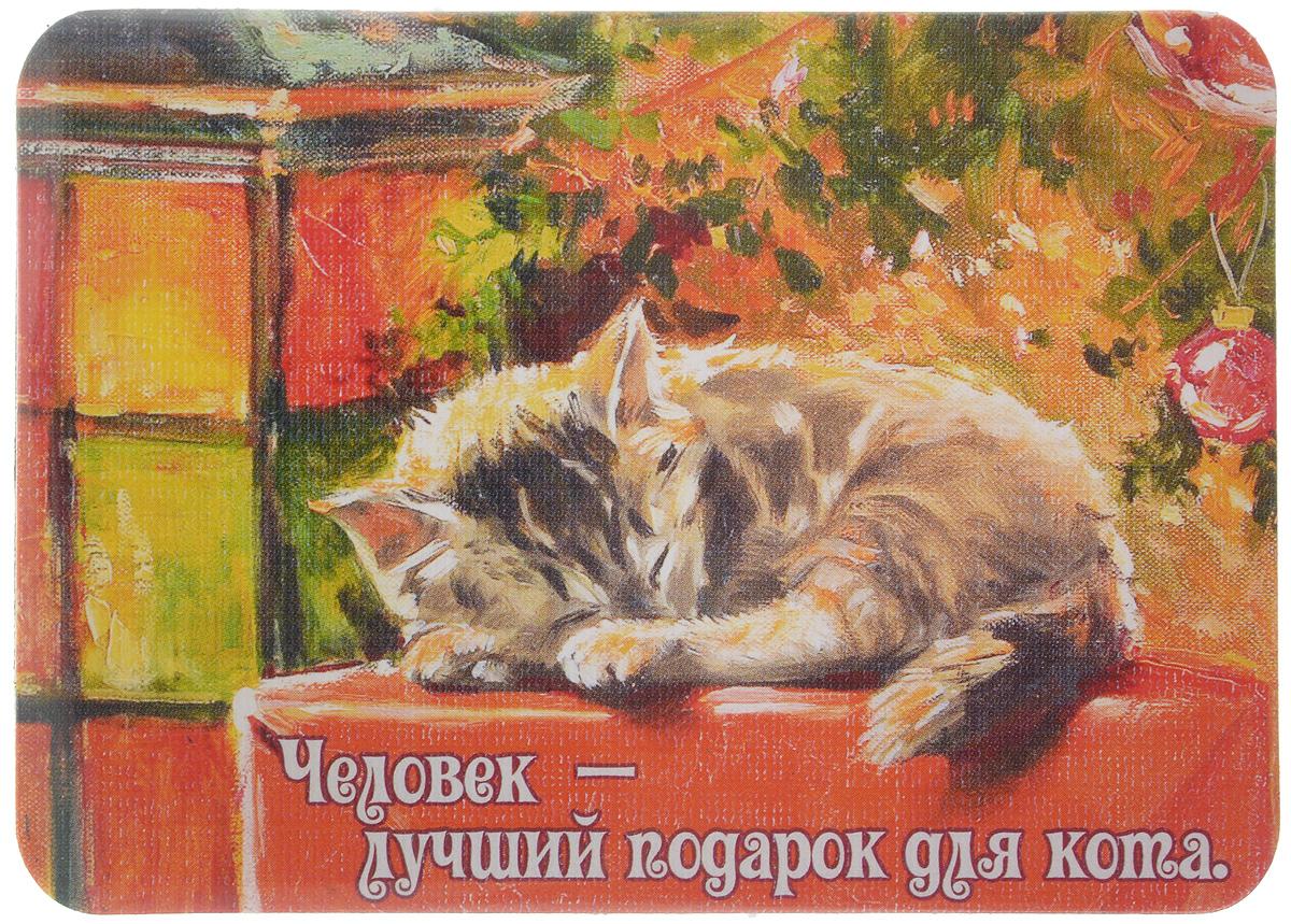Магнит Человек - лучший подарок для кота, 6,8 х 9,4 см3576Магнит Человек - лучший подарок для кота прекрасно подойдет в качестве сувенира. Изделие оформлено красочным рисунком и дополнено надписью Человек - лучший подарок для кота. Магнит можно прикрепить на любую металлическую поверхность. С помощью магнитов вы можете создать собственную мини-галерею, а также сделать оригинальный подарок вашим близким! Художник: Мария Павлова. Размер магнита: 6,8 х 9,4 см.